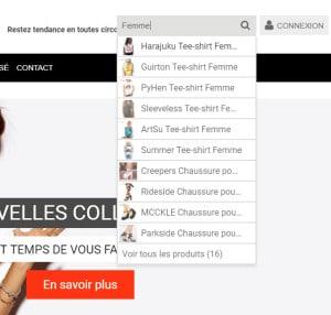 Tuto comment mettre un système d'auto-complétion sur le moteur de recherche de Shopify