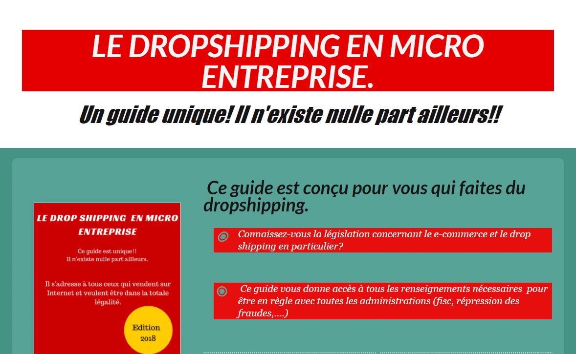 Le Guide du Micro entrepreneur en Dropshipping